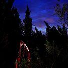 Alone in the Dark  by Pene Stevens