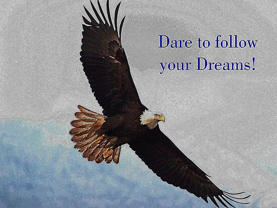 """Soaring Bald Eagle Inspirational Quote"" Posters By"