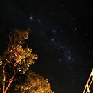 Milky Way - Bridgetown by Richard Owen