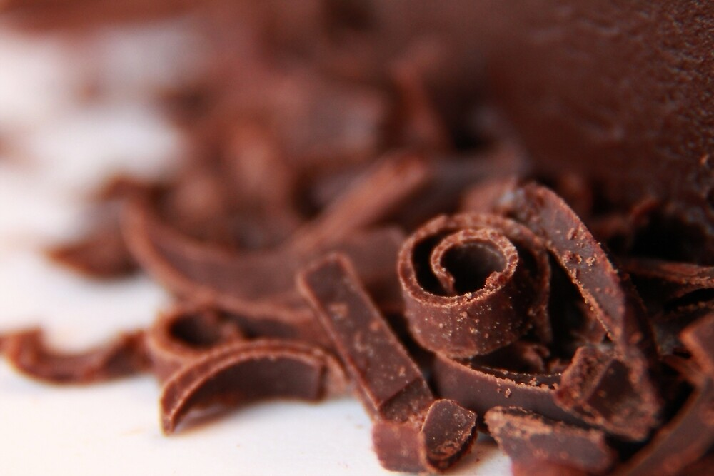 Chocolate Curl by Tracy Friesen