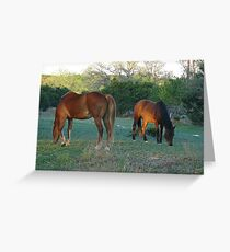 Gracy and Lily Greeting Card