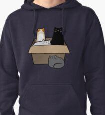 Sudadera con capucha Gatos en una caja