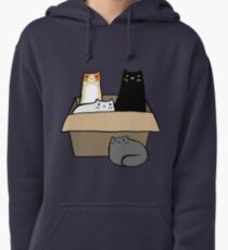 Cats in a Box Pullover Hoodie