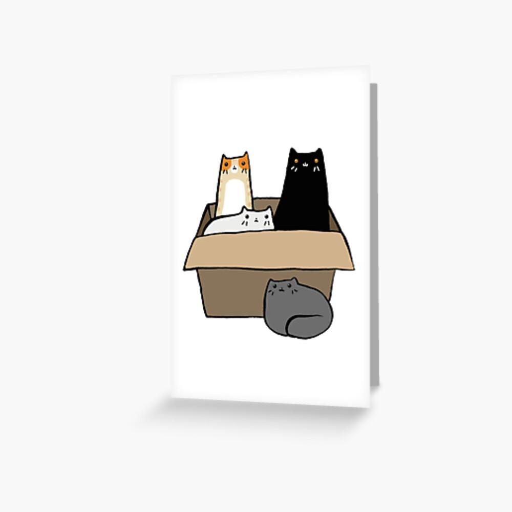 Katzen in einer Box Grußkarte