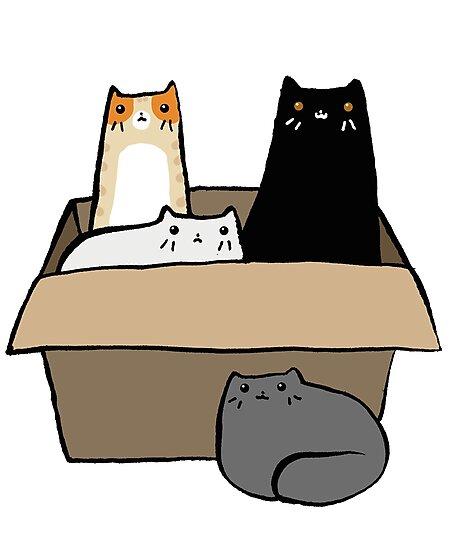 Cats in a Box by SaradaBoru