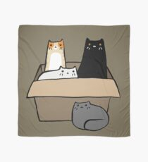 Cats in a Box Scarf