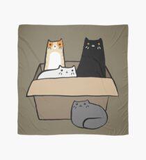 Pañuelo Gatos en una caja
