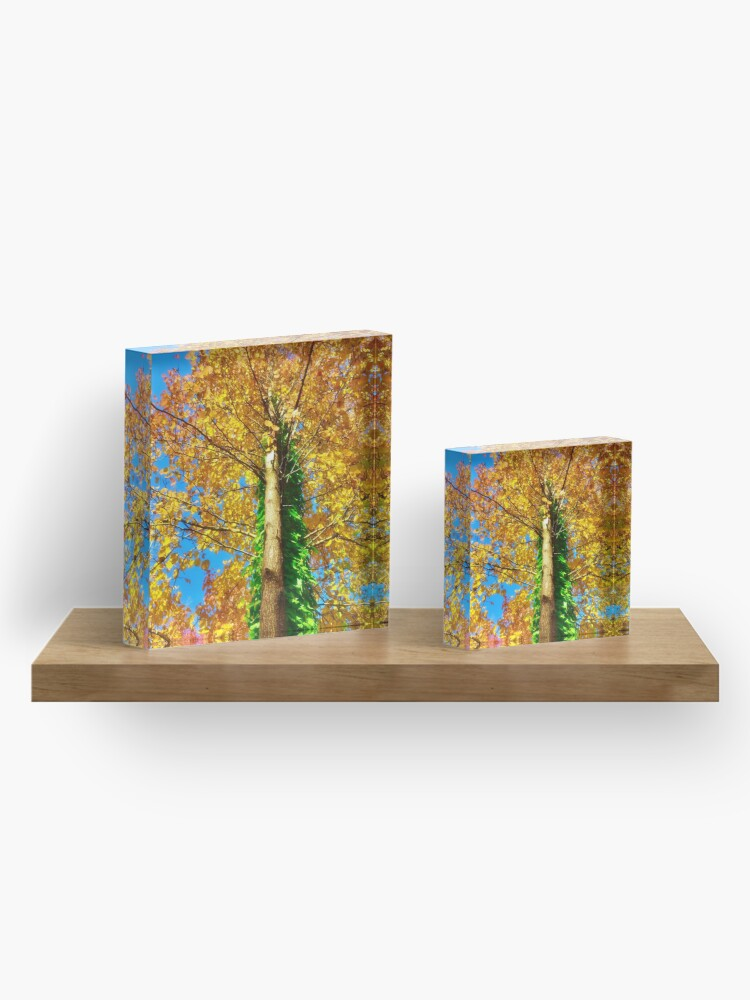 Alternate view of Fall color Acrylic Block