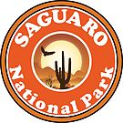 SAGUARO NATIONAL PARK ARIZONA CACTUS EAGLE SUN by MyHandmadeSigns