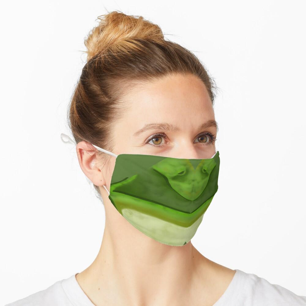 Green Frog Face Mask Mask