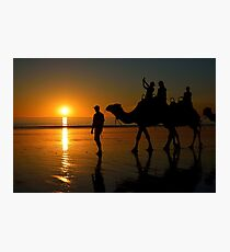 Camels on Cable Beach 1 Photographic Print