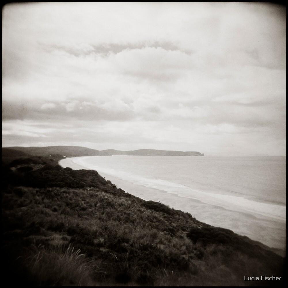 { beach dream } by Lucia Fischer