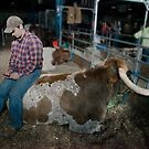On Steer Texting by Russell Fry