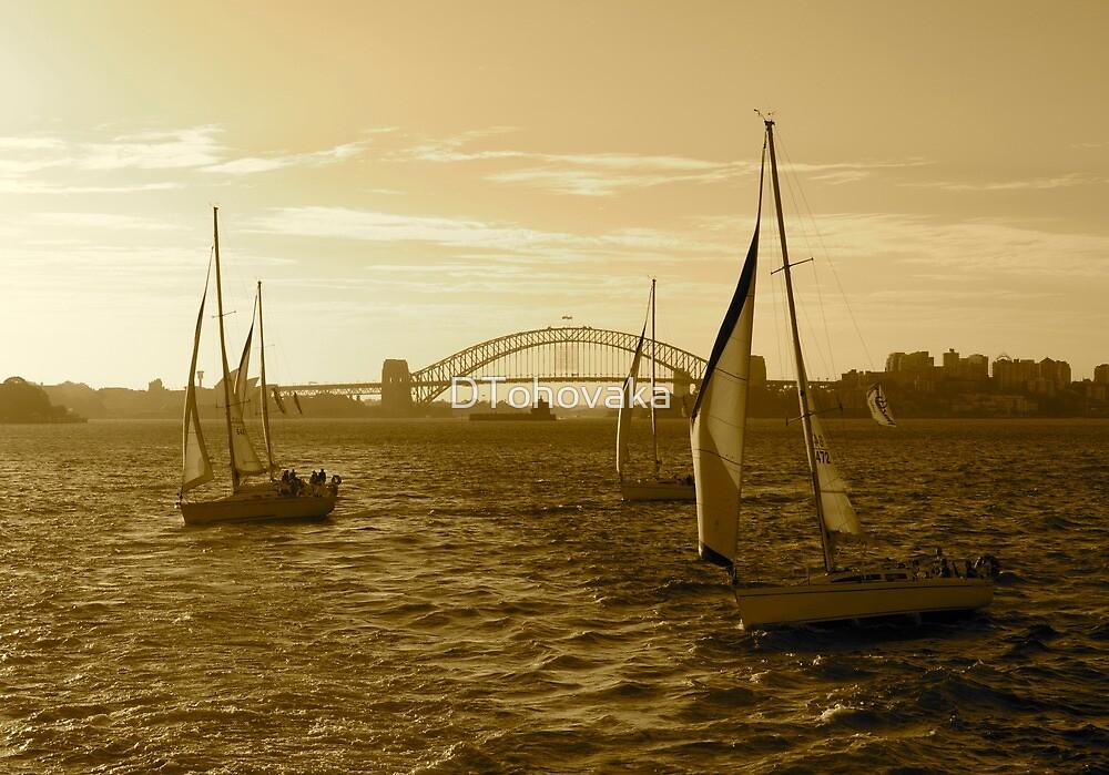 Sydney Harbour, Australia by DTohovaka