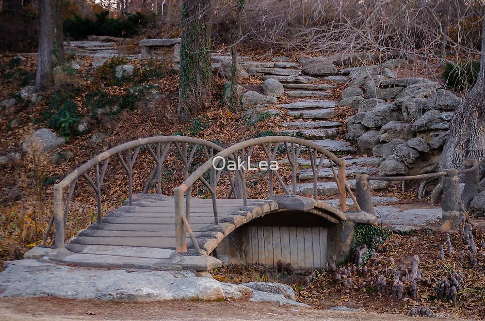Wooden bridge on a rocky road by OakLea