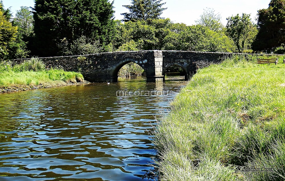 The Bridge to Lerryn.( pronounced ler-in)  by Malcolm Chant