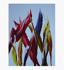 Abstract leaves Photographic Print