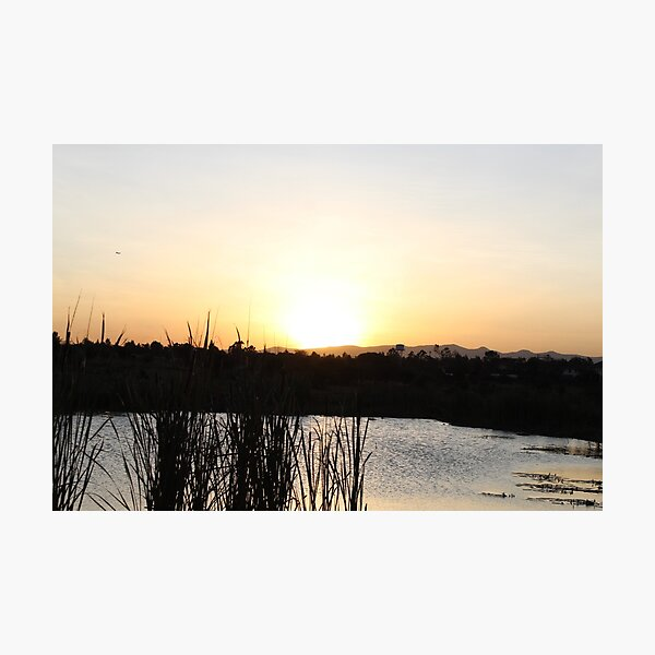The Sunset Lake Collection Photographic Print
