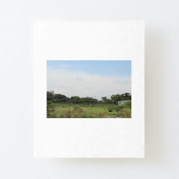 The Taking a Walk Collection Canvas Mounted Print