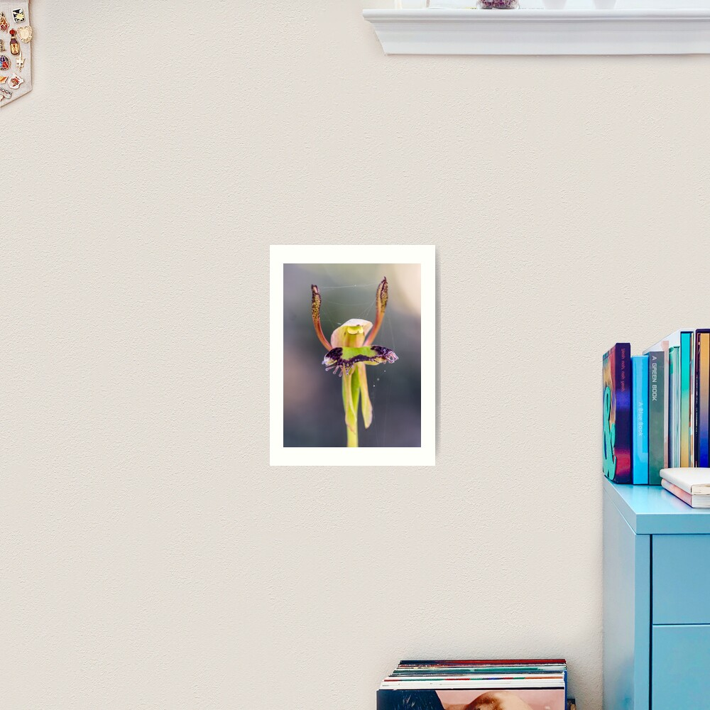 Hare Orchid Art Print