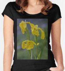 Yellow Flag Iris - Donegal Women's Fitted Scoop T-Shirt