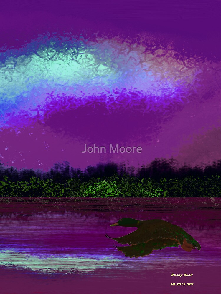 Duck at dusk by John Moore