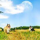 Country Ladies by BellatrixBlack