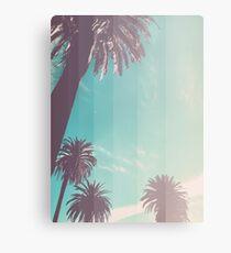 Teal Palm Fade Canvas Print