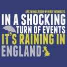 AFC Wimbly Wombys - Raining in England by Chris Carruthers