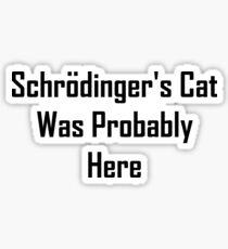 Schrodinger's Cat Was Probably Here Sticker