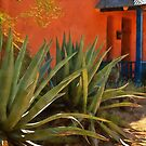 Agaves in the Barrio by Linda Gregory