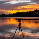 Captured........ by Dave  Hartley