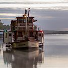 Amphibious.......... by Dave  Hartley