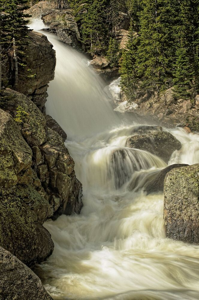 Alberta Falls RMNP by johnny gomez