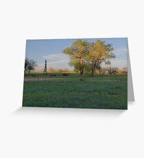 Grasslands at Golden Hour Greeting Card
