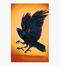 Three Eye'd Raven  Photographic Print