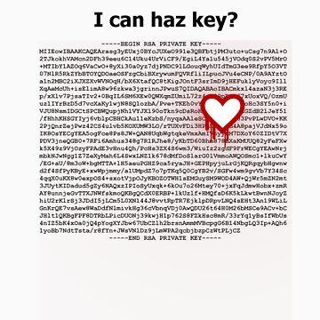Heartbleed OpenSSL One by Koniii