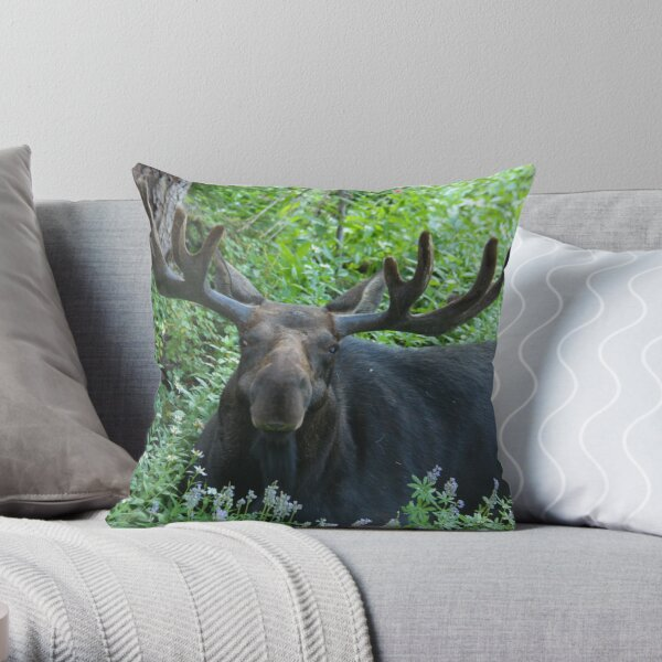 King of The Forest Throw Pillow & Tote Bag Throw Pillow