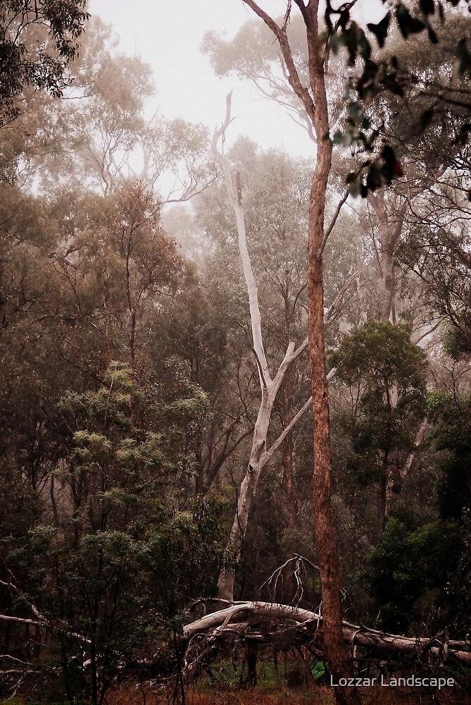 Tree Dance by Lozzar Landscape