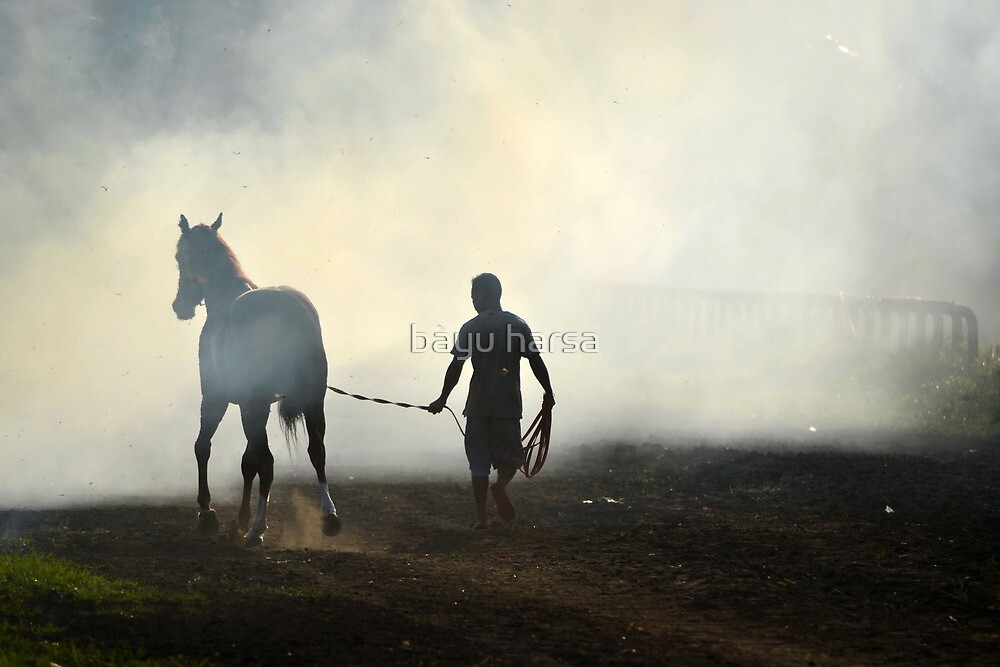 brown horse and a man by bayu harsa