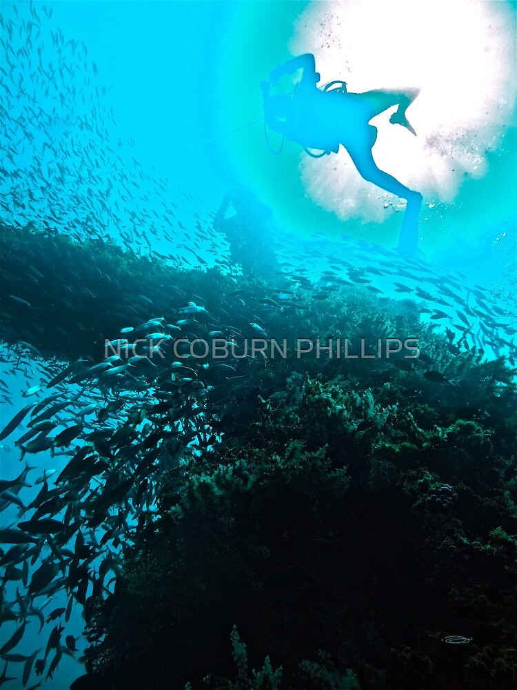 A WORLD IN A DAYS OCEAN by NICK COBURN PHILLIPS