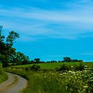Winding Road by George Burrows