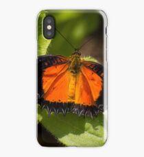 Flutterer at Rest iPhone Case/Skin