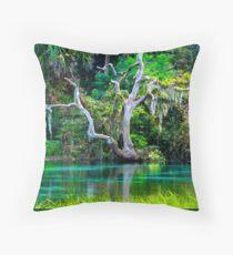 Emerald Paradise, Rainbow Springs Florida Throw Pillow