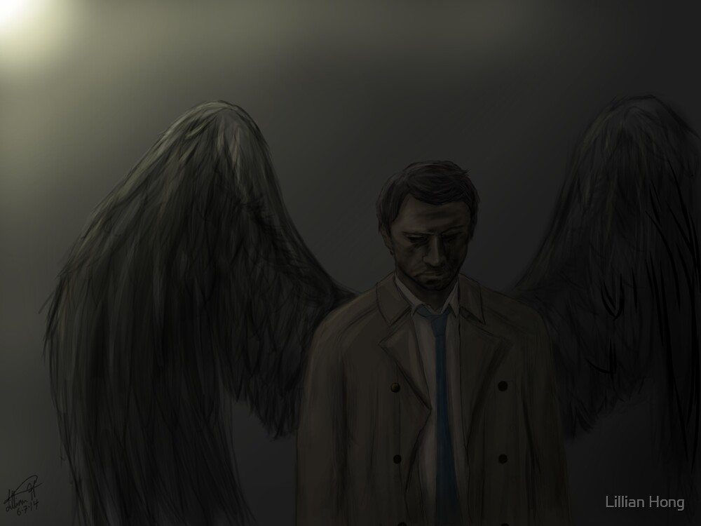 Cas, Falling From Light by booklils