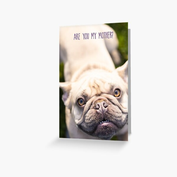Are You My Mother Greeting Card Greeting Card