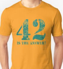 42 is the answer to everything Unisex T-Shirt