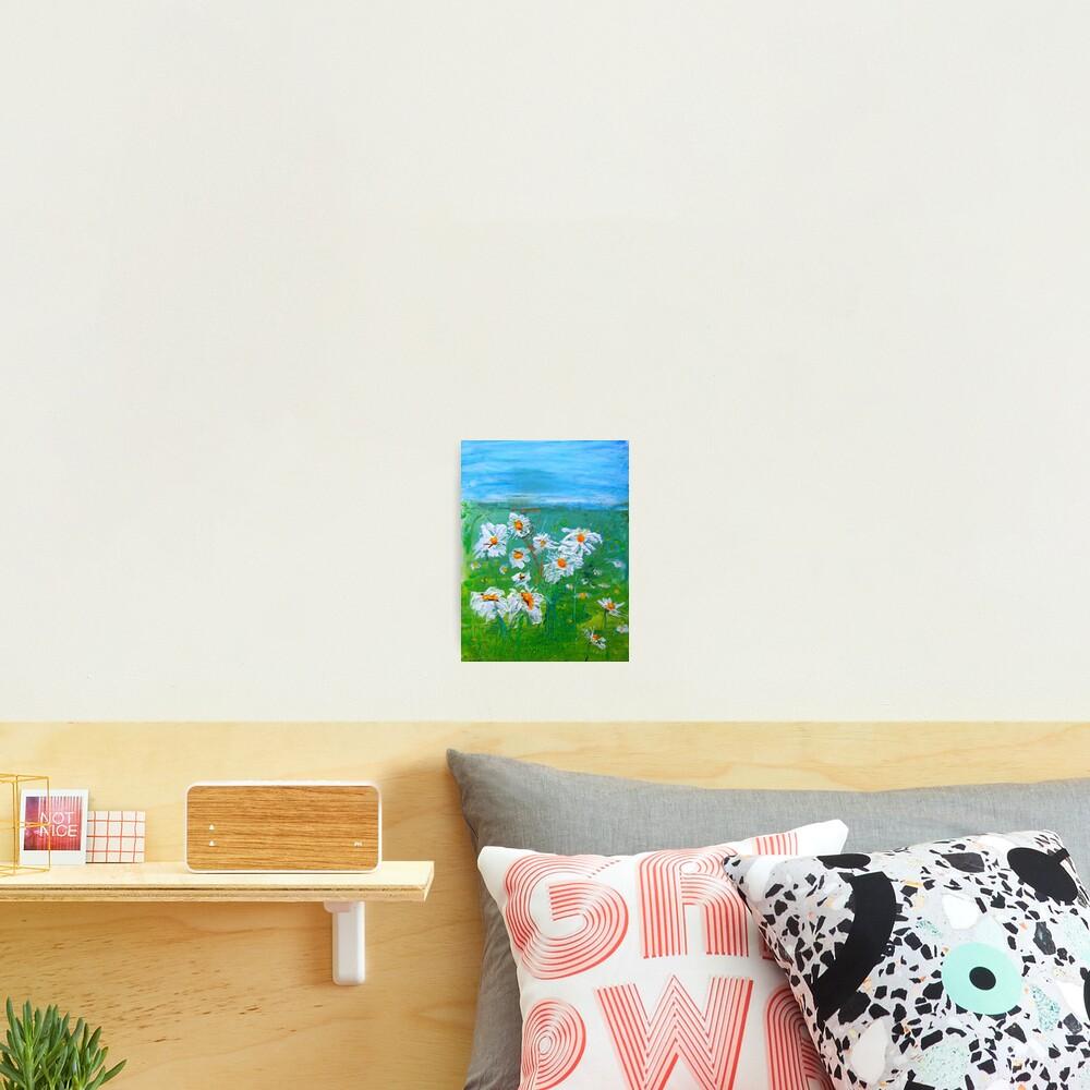 Meadow Daisies Photographic Print
