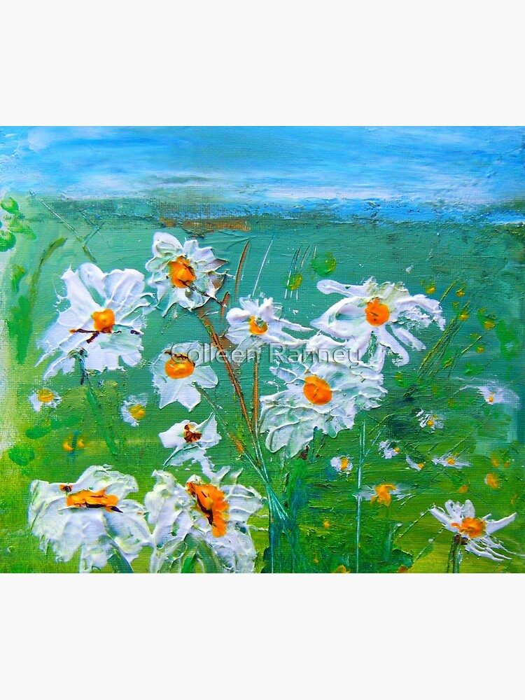 Meadow Daisies by colleenranney