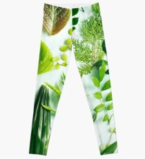 Foliage 2 Leggings